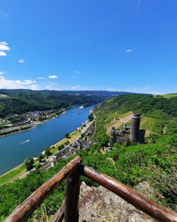 Wandelen langs de Loreley © Fiona Brost, Loreley Touristik e.V.